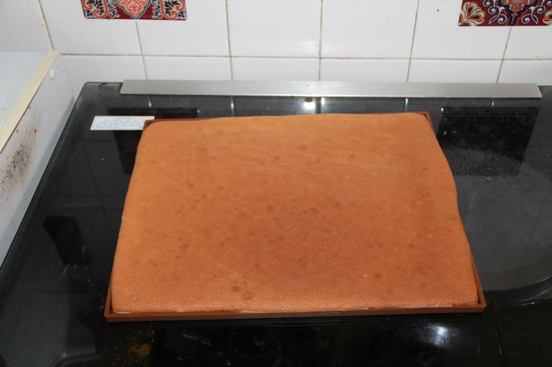 recette-cuisson-genoise-biscuit-roulé-buche-spiruline